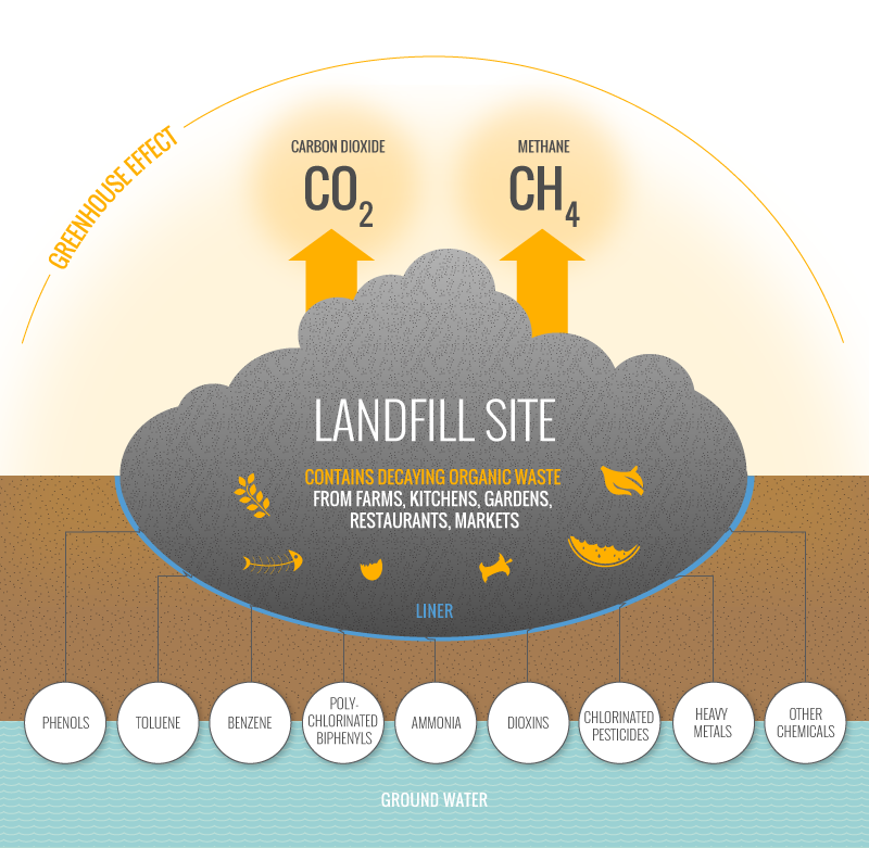 The danger of landfill sites